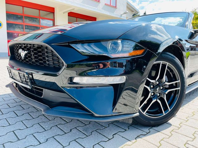 Ford, Mustang, Cabrio 2.3 EcoBoost Premium 55 Jahre Edition